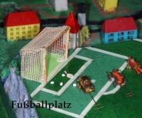floh-dressur-fussball-training-fussballplatz