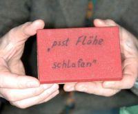 flohzirkus-reisegepaeck-pausenbox