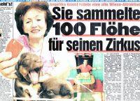 2005-flohspende-bild