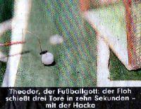 theodor-der-fussball-gott